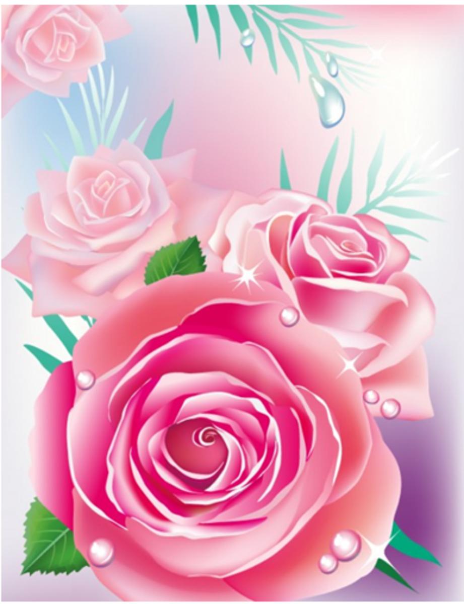 Large Pink Roses