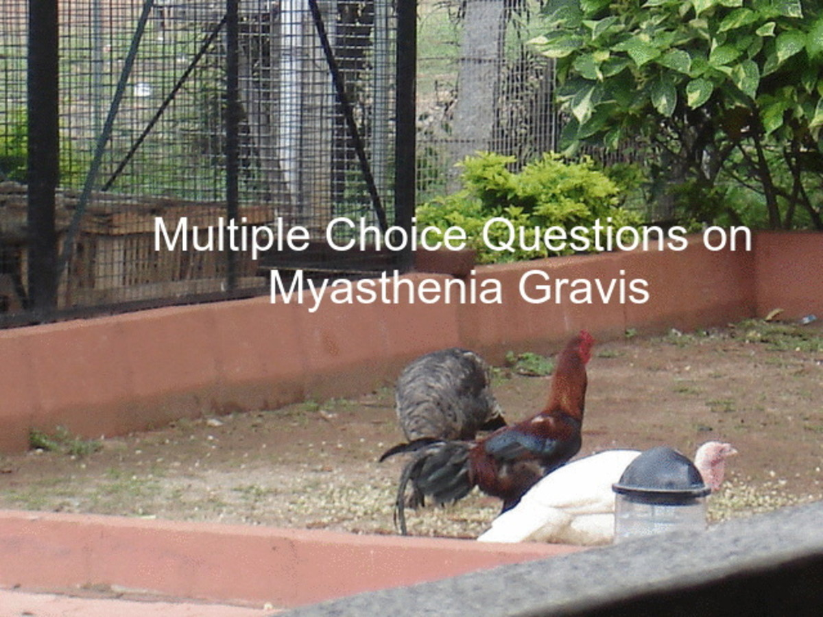Multiple Choice Questions on Myasthenia Gravis