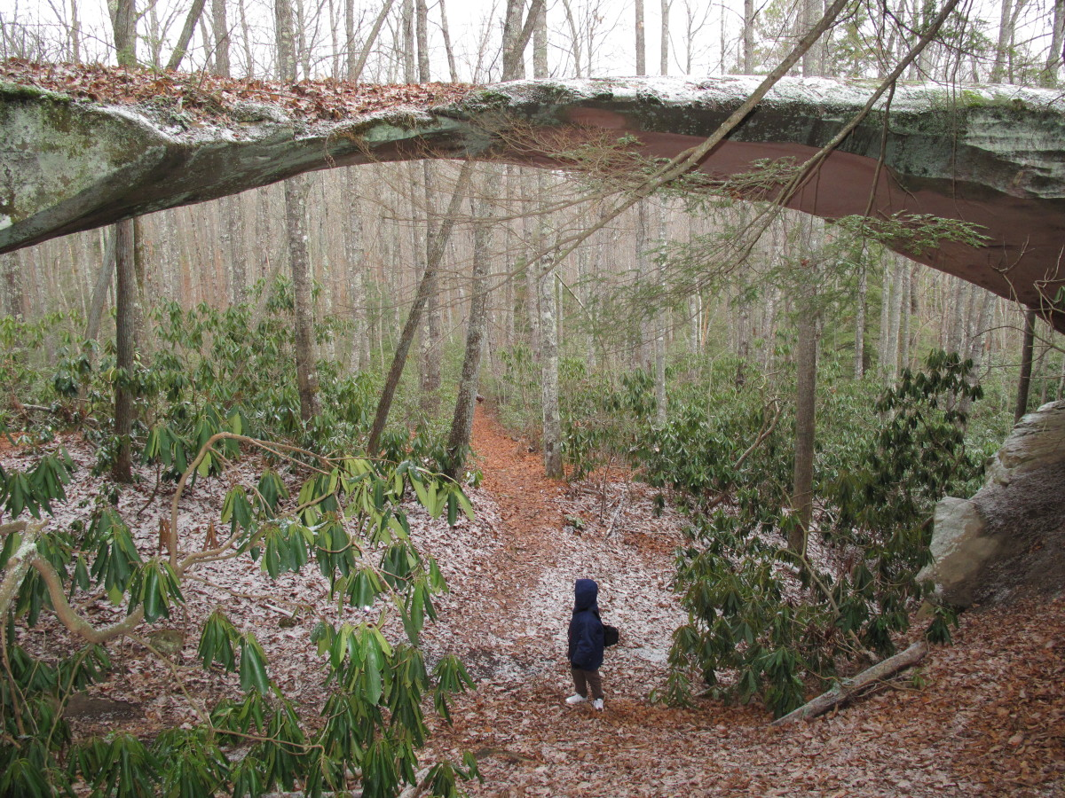 Hiking in the snow showers under Natural Bridge,Pickett State park