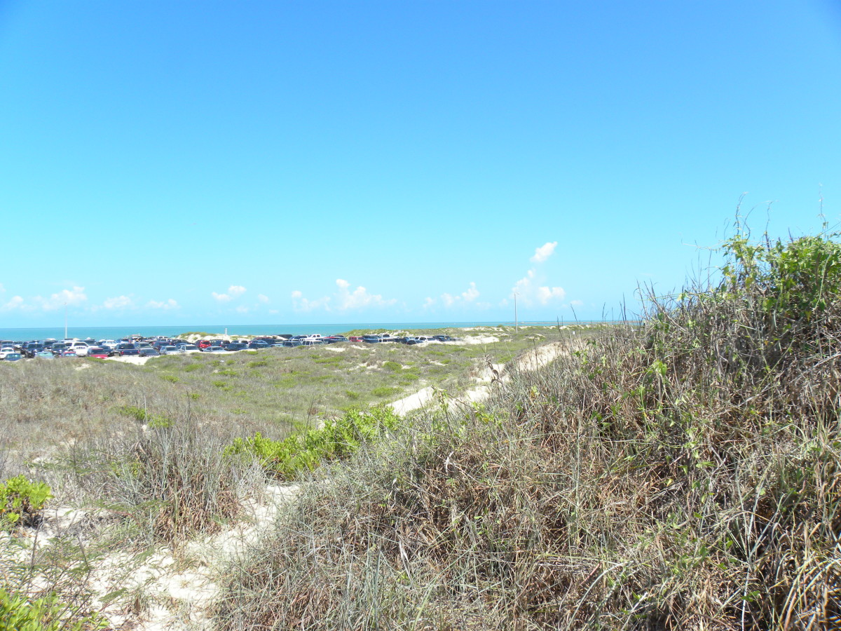 Isla Blanca RV Park South Padre Island TX