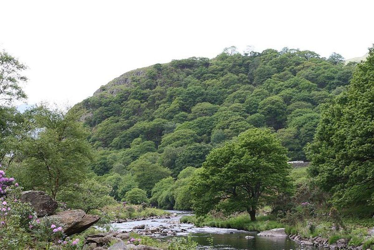 Dinas Emrys in Gwynedd Wales.