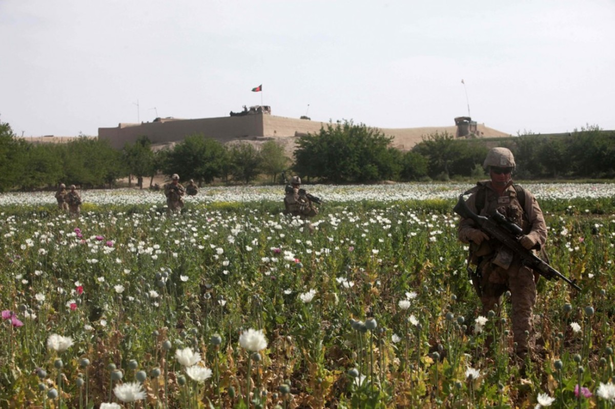 Government propaganda would have us believe that guarding the opium fields is in the best interest of peace.