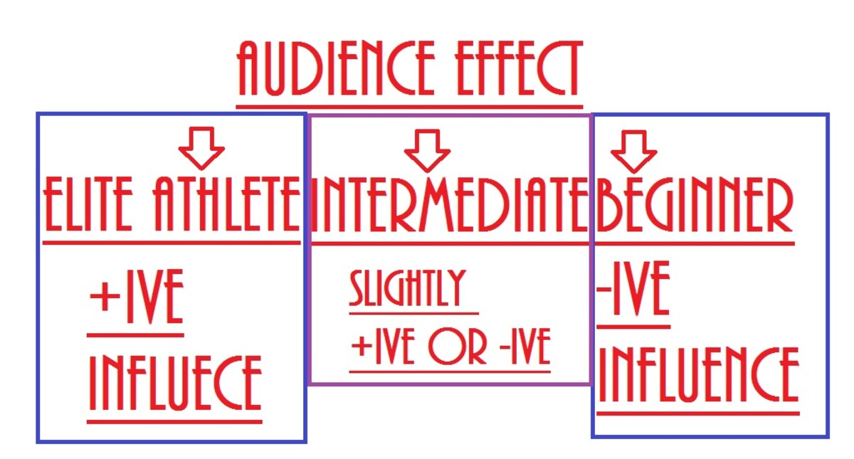 How does training level and competency effect audience interaction