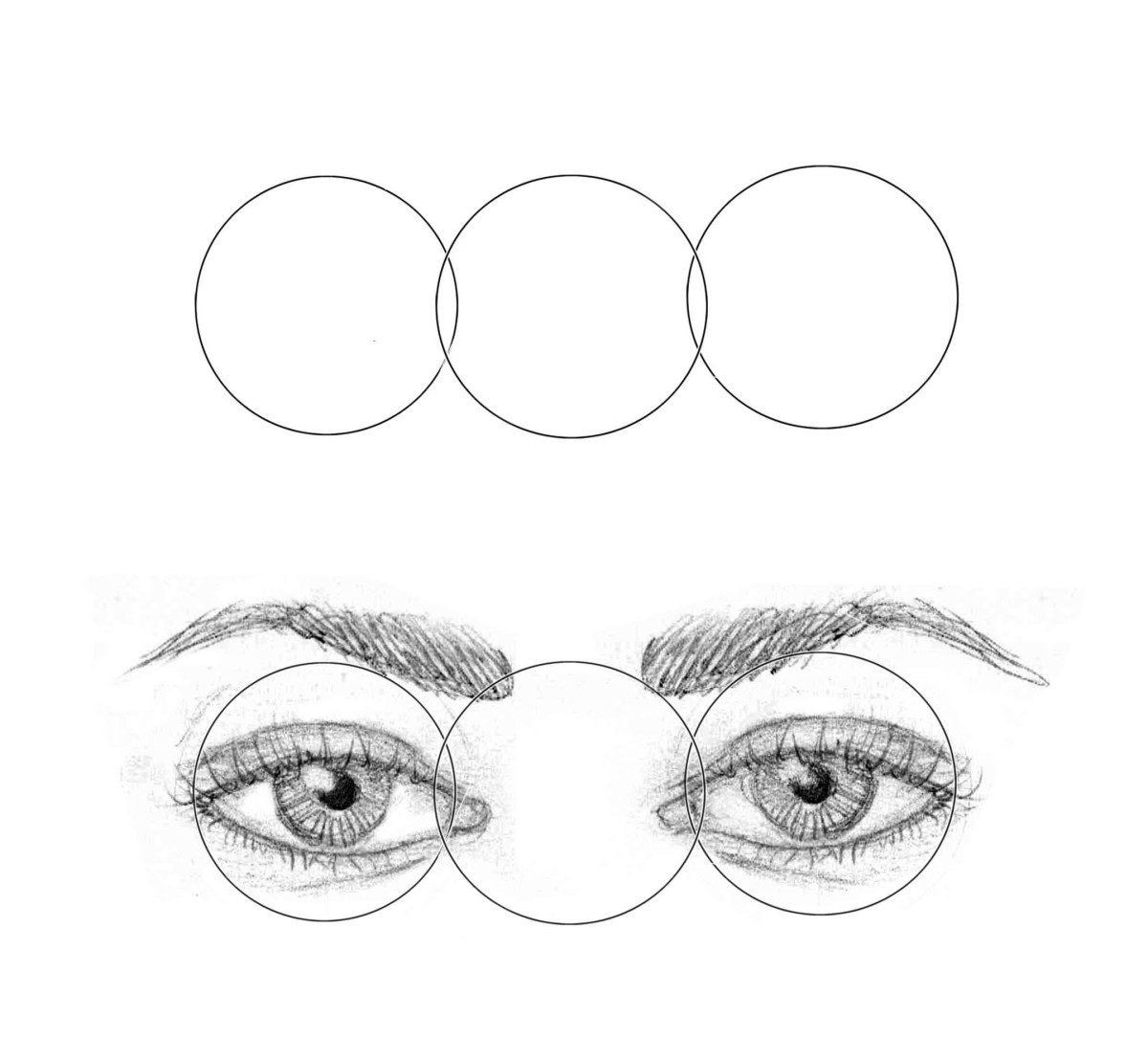 Close-set eye width