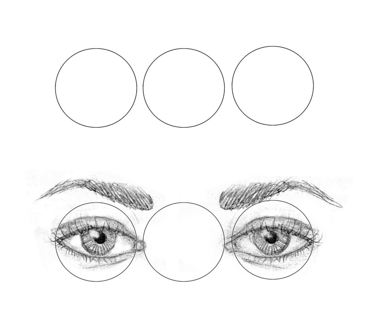 Wide-set eye width