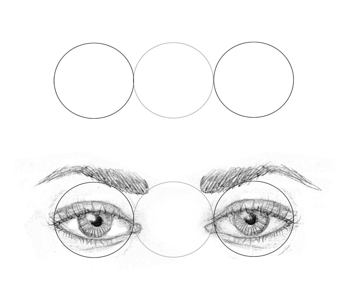 General eye width