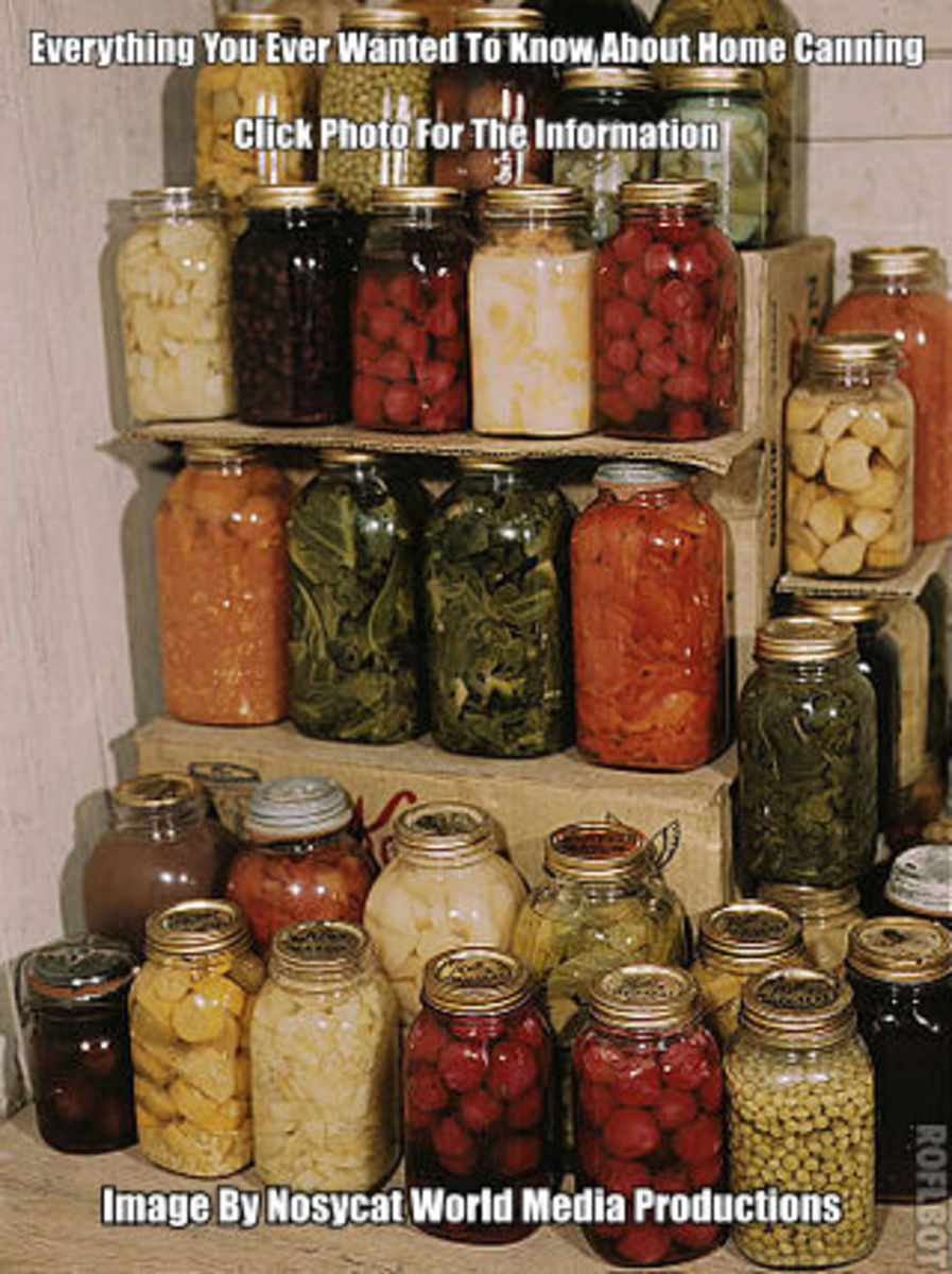 Check out all the delicious canned vegetables above. Anyone can use a pressure canner to cook and prepare their own vegetables.