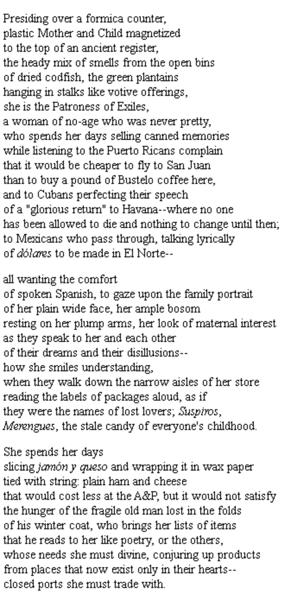 analysis-of-poem-the-latin-deli-an-ars-poetica-by-judith-ortiz-cofer