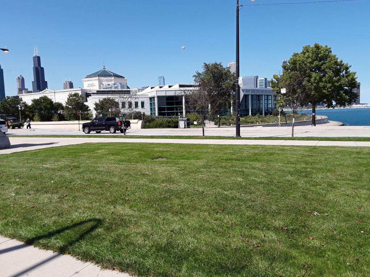 Shedd Aquarium with city in background