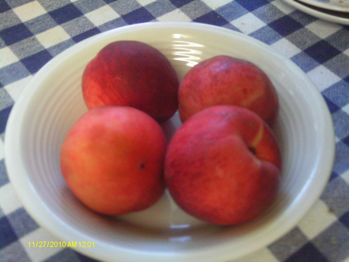 Fresh peaches ready to eat or bake into a pie