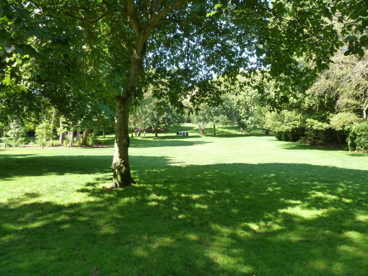 The meadows in the Gardens.