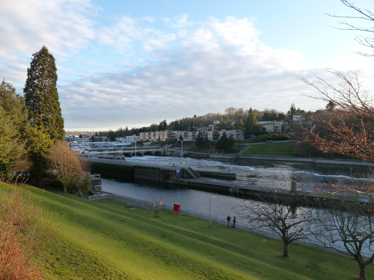 Places to Visit in Seattle: The Ballard Locks