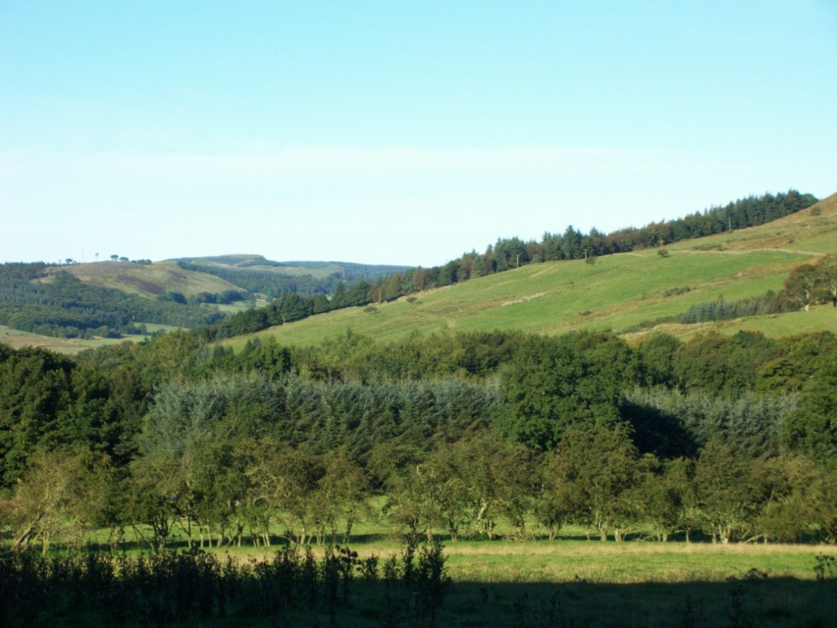 The western end of Benarty Hill and Wood. The likely area of Benarty around which Queen Mary made her escape from Loch Leven.