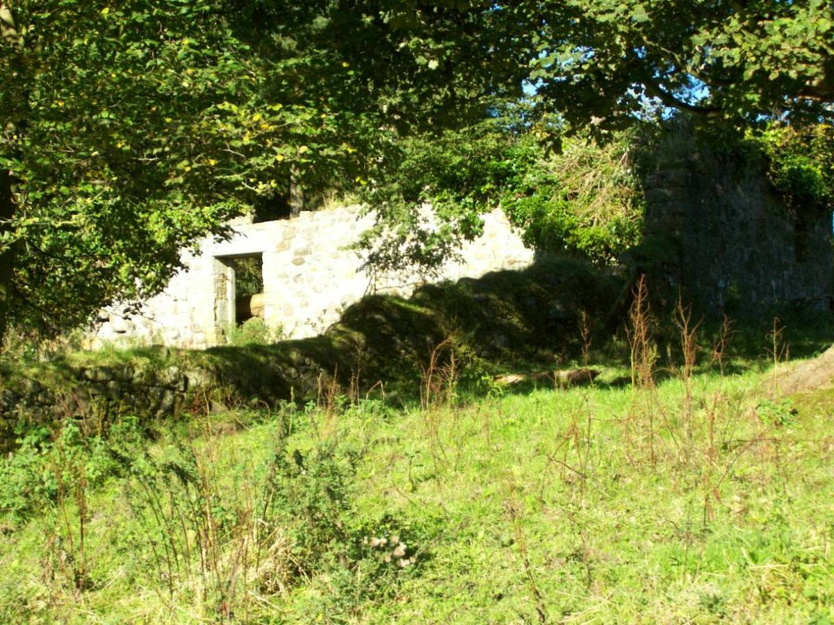 Old cottages now in ruins - all that's left of the Lochore House Estate.