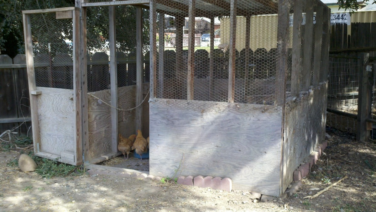 How to Build a Movable Chicken Coup or Chicken Tractor