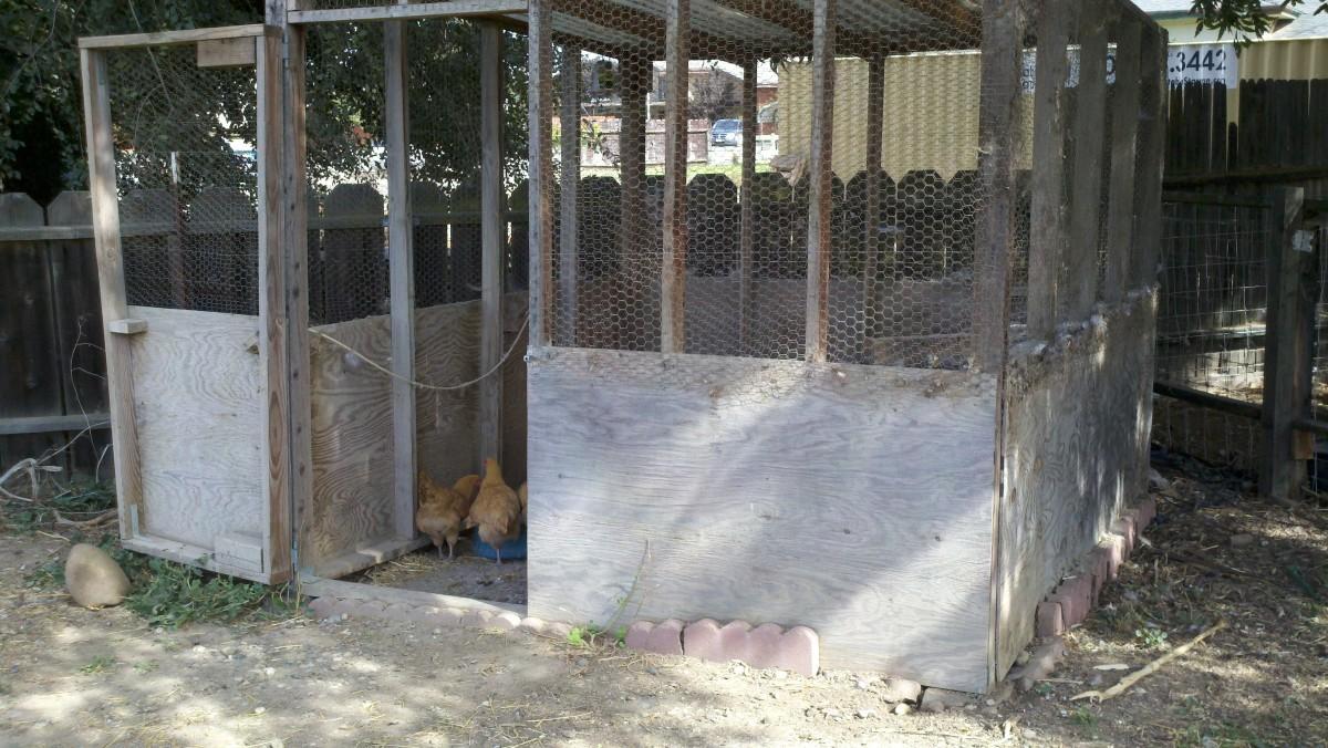 Our hen house/chicken coop