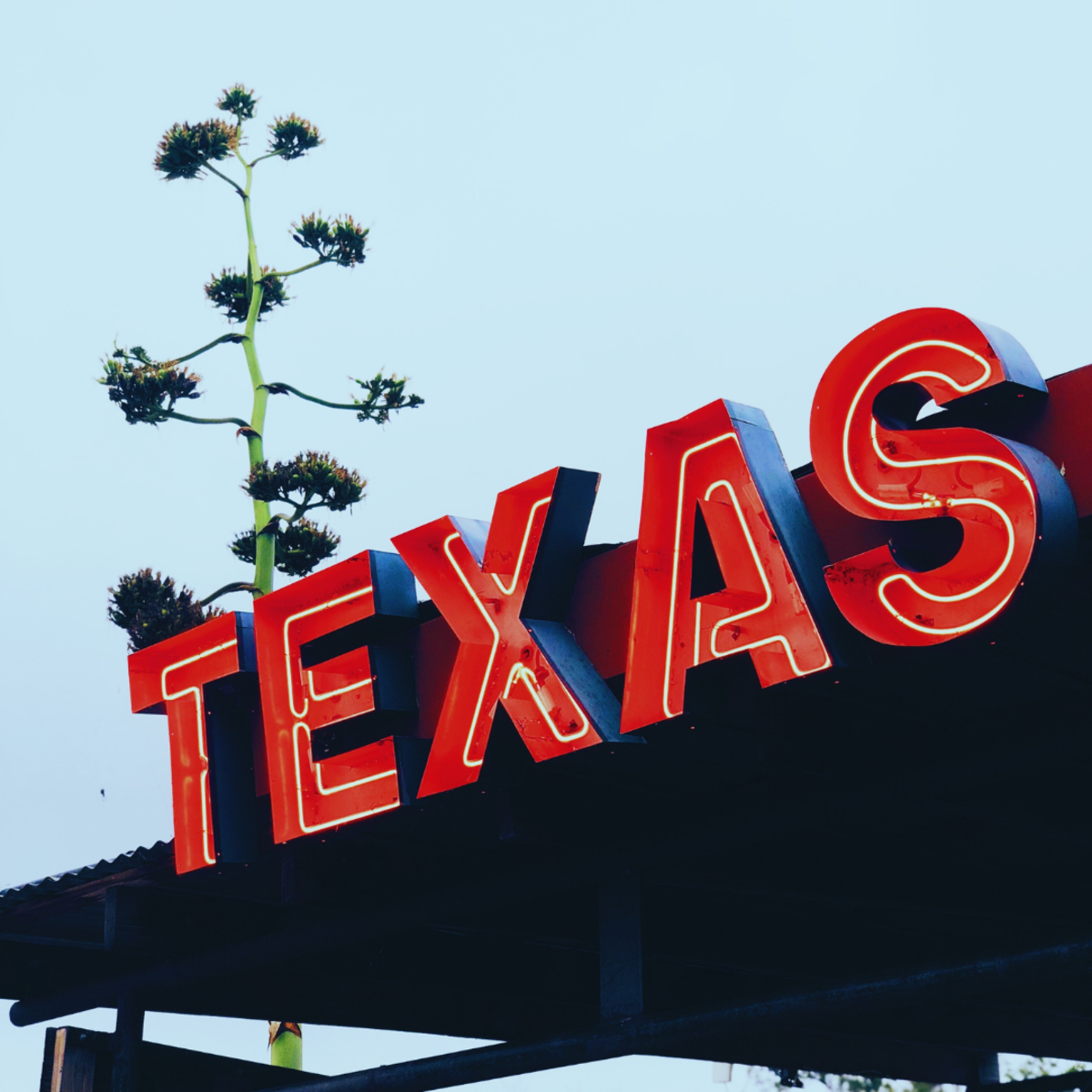 You may want to study this Texan way of speaking before traveling to the republic (er, state).