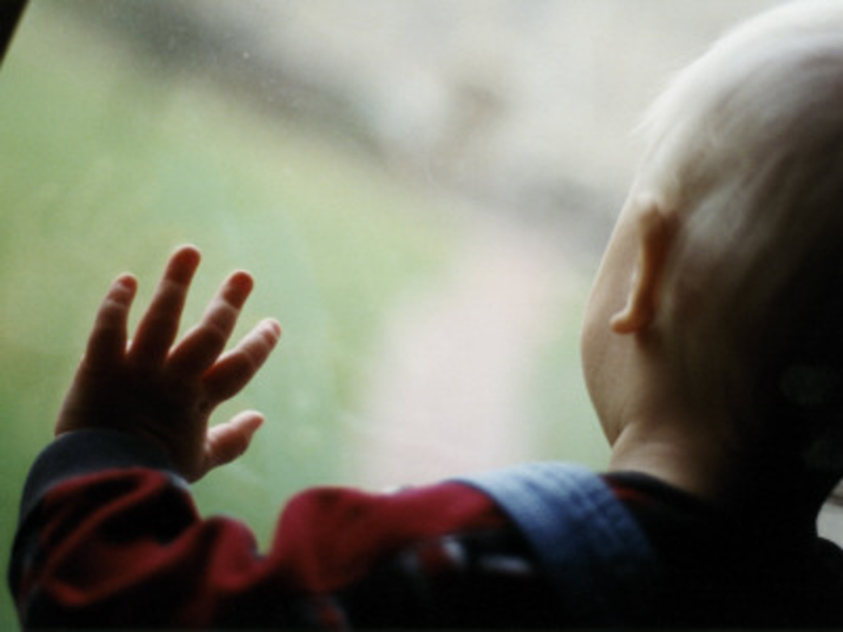 Toddler Looking Through the Window
