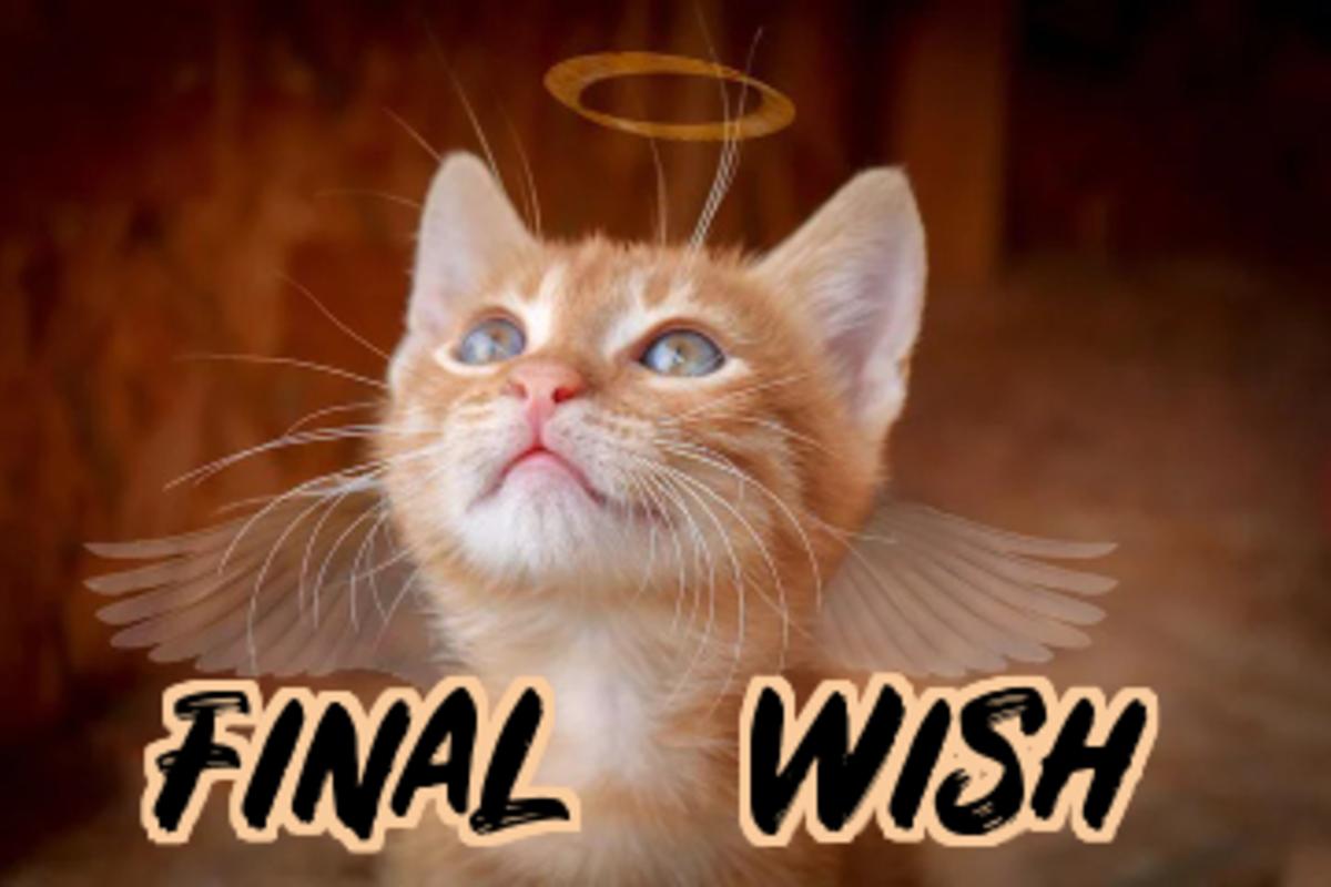 poem-final-wish
