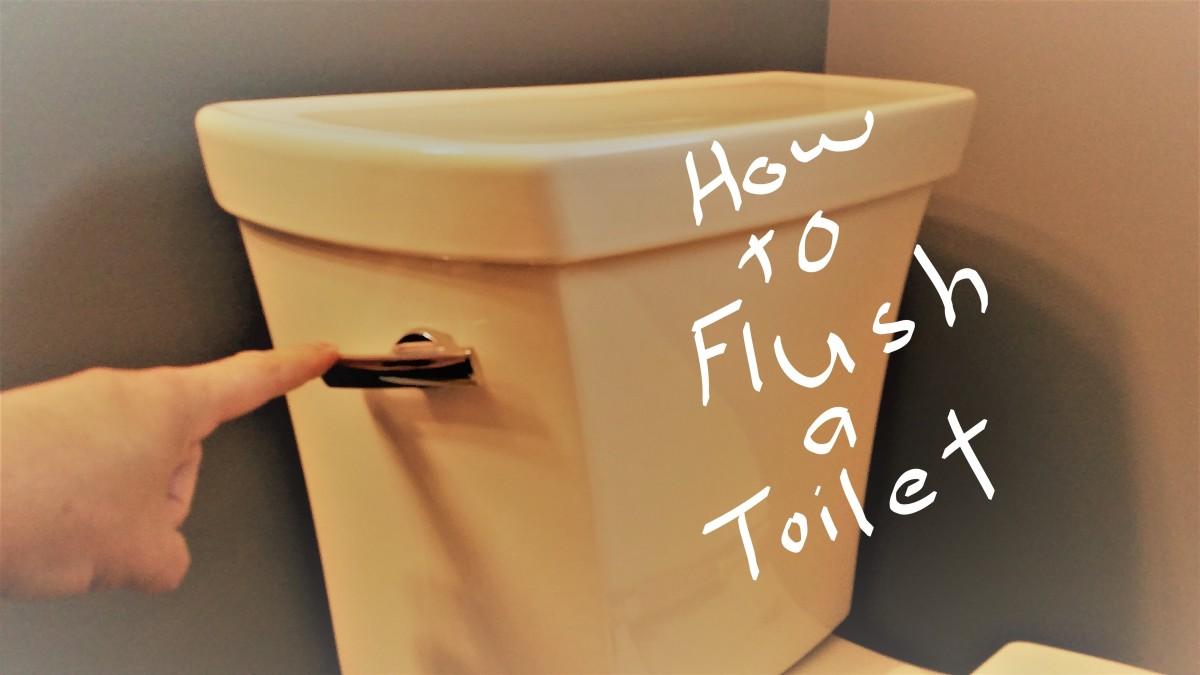 The Not So Secret Secret to Flushing a Toilet