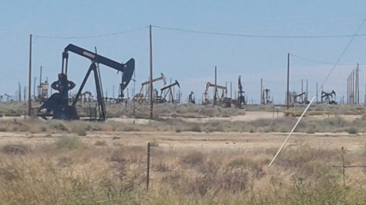 like a sea of rusty vultures