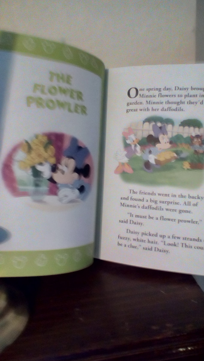 Fun story with familiar characters Minnie Mouse and daisy Duck