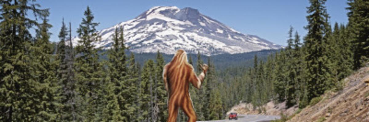 Sasquatch Hitchhiking