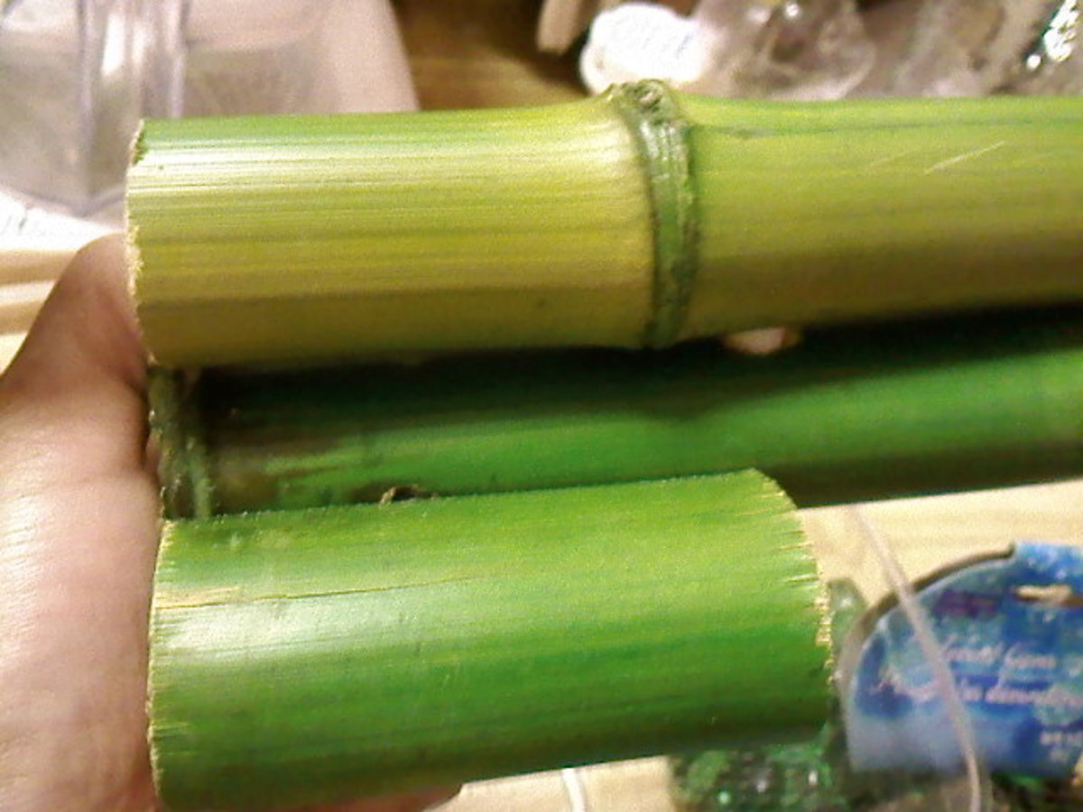 The last three pieces of bamboo connected together by a straw. And they stand on their own so I don't have to worry about that.