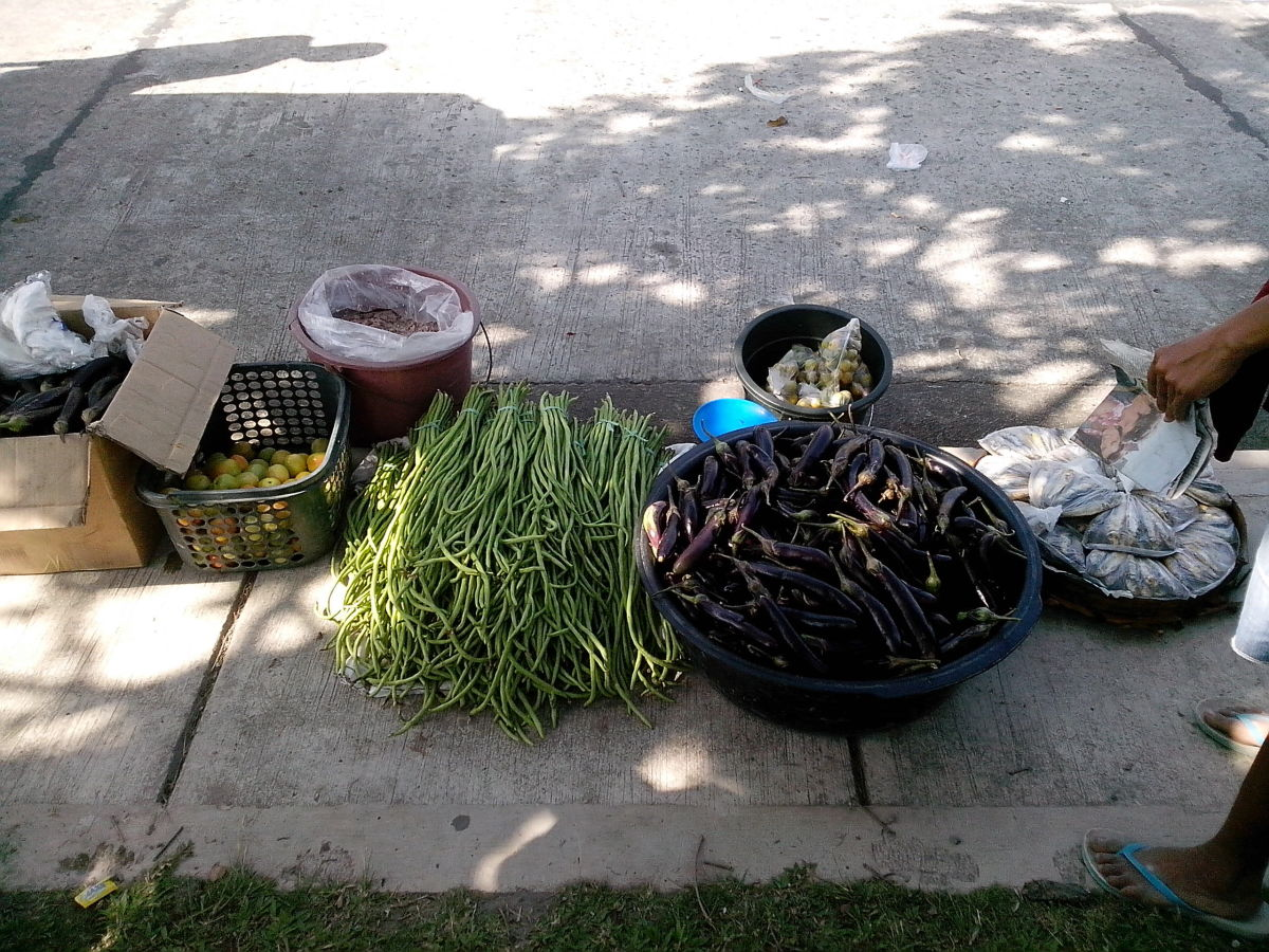 Newly-harvested agricultural/sea produce of MInalabac (Photo Source: Ireno A. Alcala)