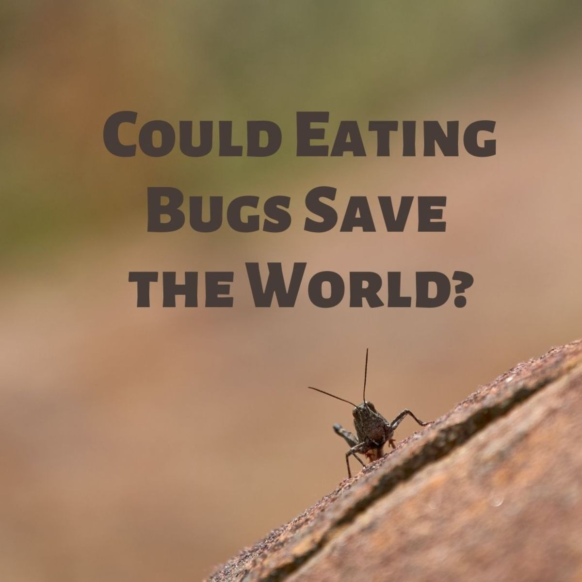 Plenty of people around the world eat bugs on a regular basis—maybe you should give it a try!