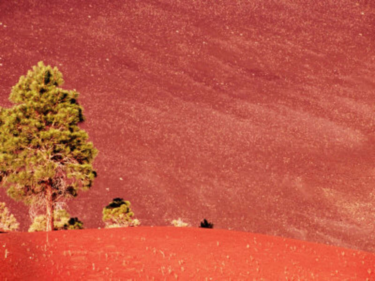 hiking-oleary-peak-in-flagstaff-arizona
