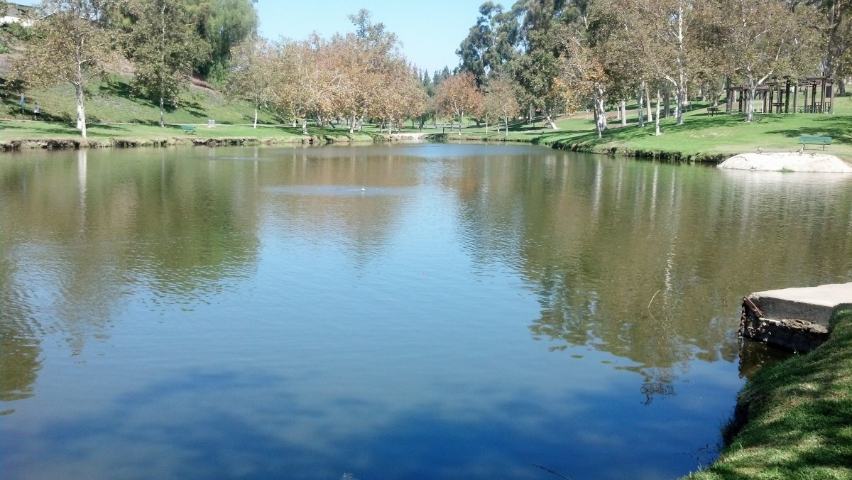 Orange County Fishing at Ted Craig Regional Park in Fullerton, California