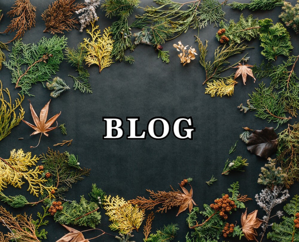 Put Blogging On Your Gift List