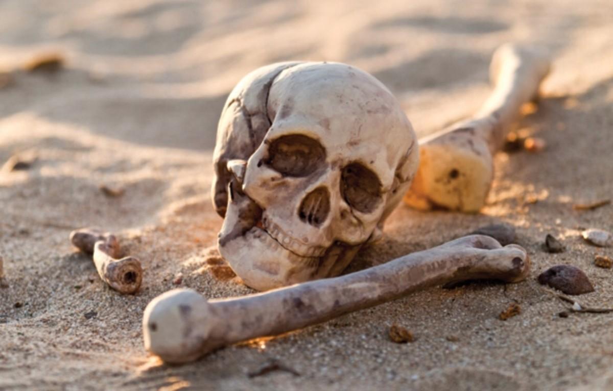 bringing-life-from-dry-bones-ezekiel-371-14
