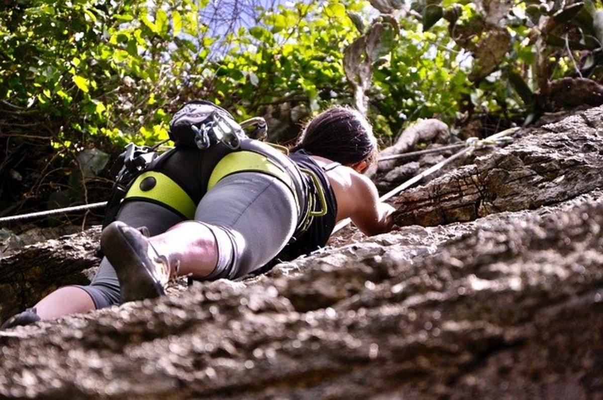 """""""Climbing"""" courtesy of Erika Marcia LM at Pixabay"""