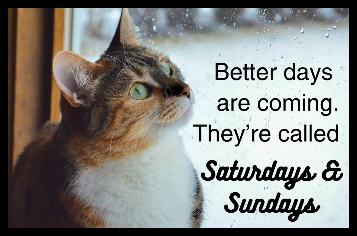 Better days are coming. They're called the Saturdays & Sundays.