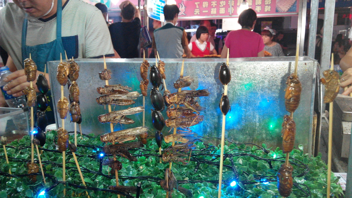 a-guide-to-food-in-shenyang