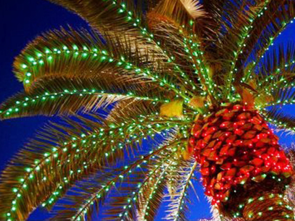ideas for great tropical christmas decorations