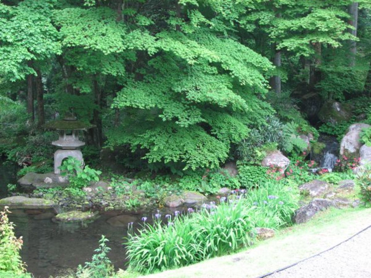 The small lake and stream, Tamozawa villa.