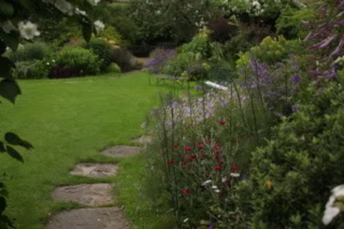 a literary analysis of garden of love by william blake I went to the garden of love what are the poetic devices used in william blake's the garden what message is william blake trying to convey in the.