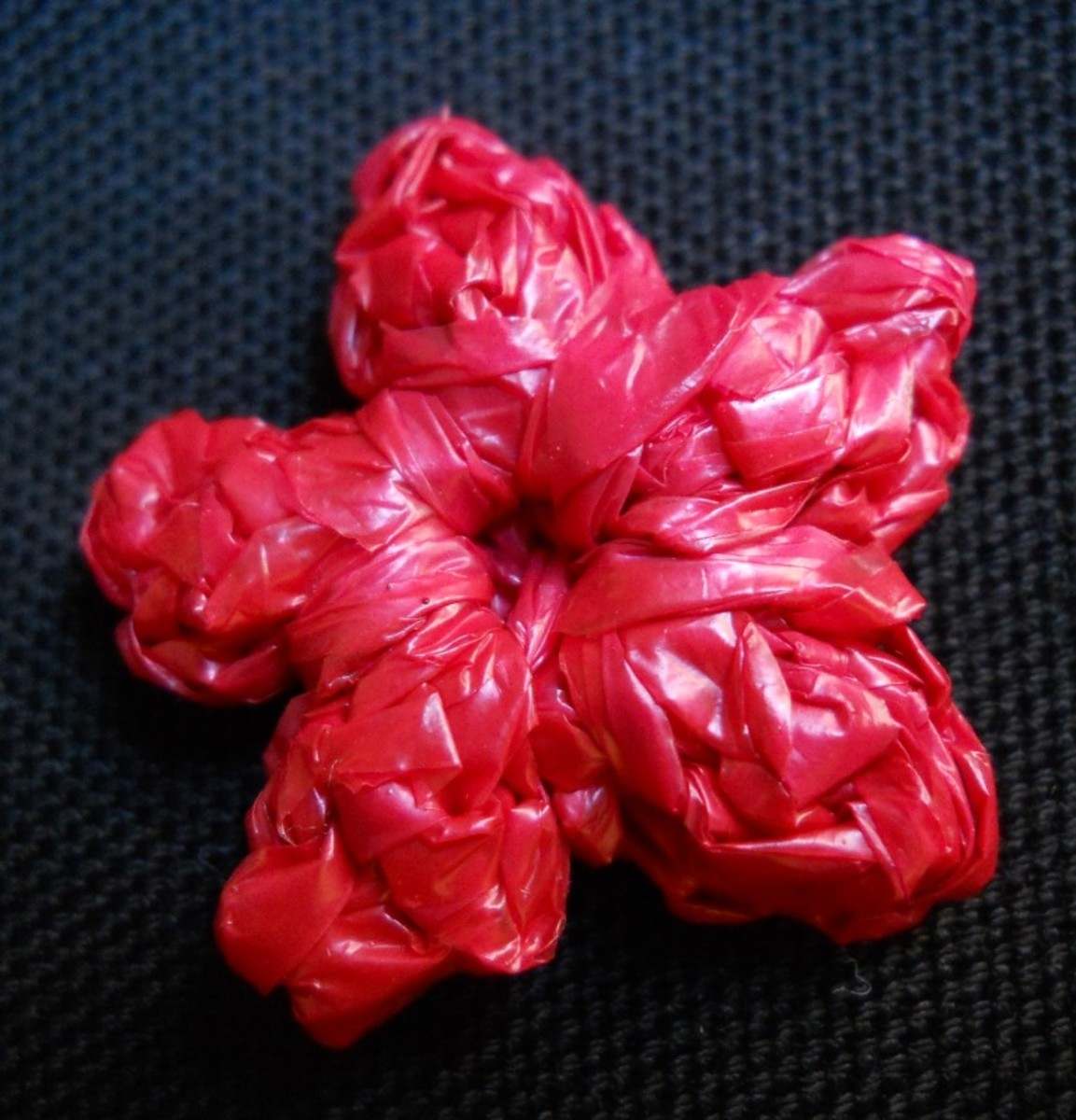 Photo #6: 2D CLUSTER Flower Back View
