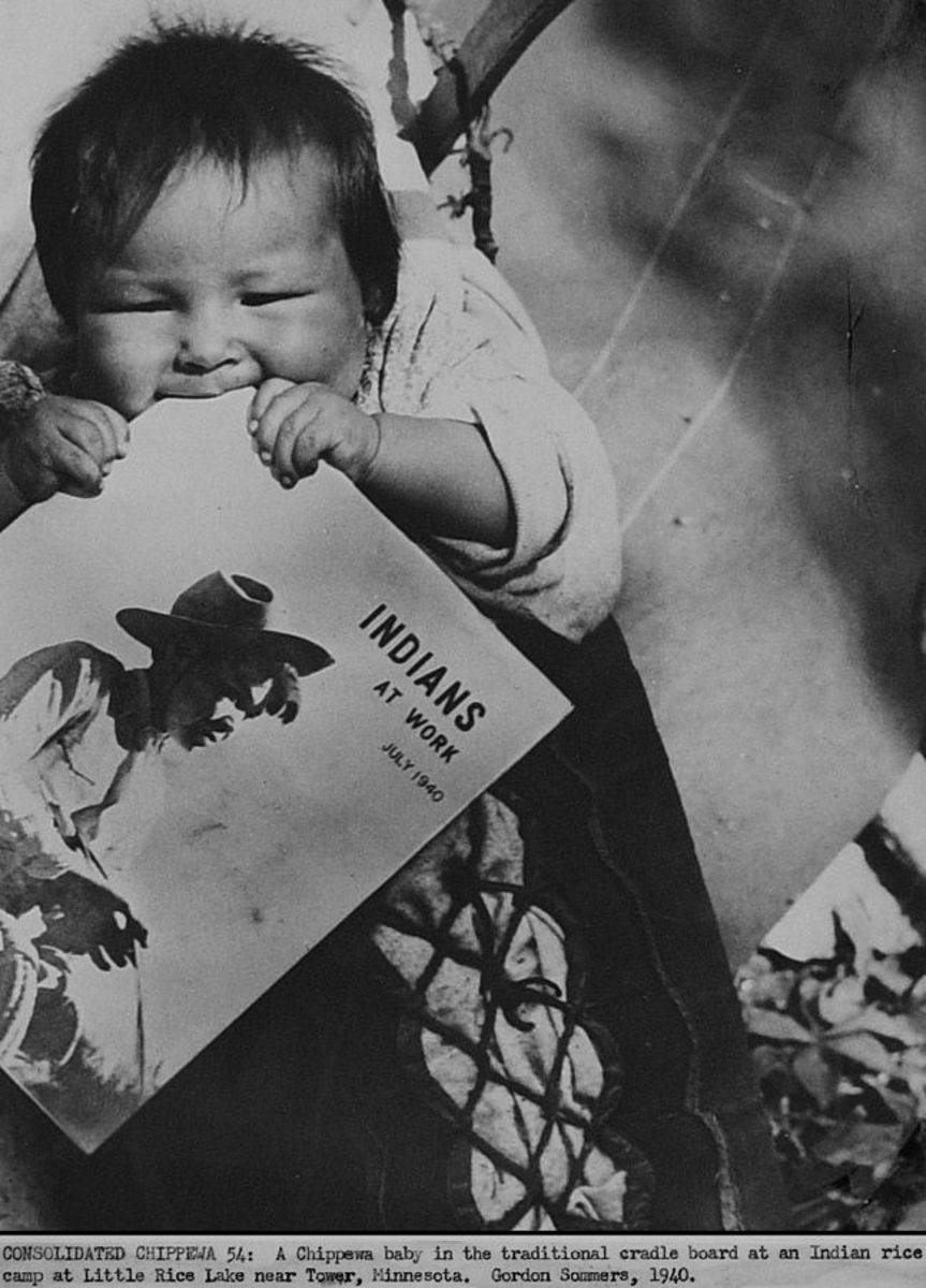 "1940 US government photo. Minnesota farm worker scene of Chippewa baby (at a rice field) strapped to cradleboard while teething on an Office of Indian Affairs print magazine called ""Indians at Work""."