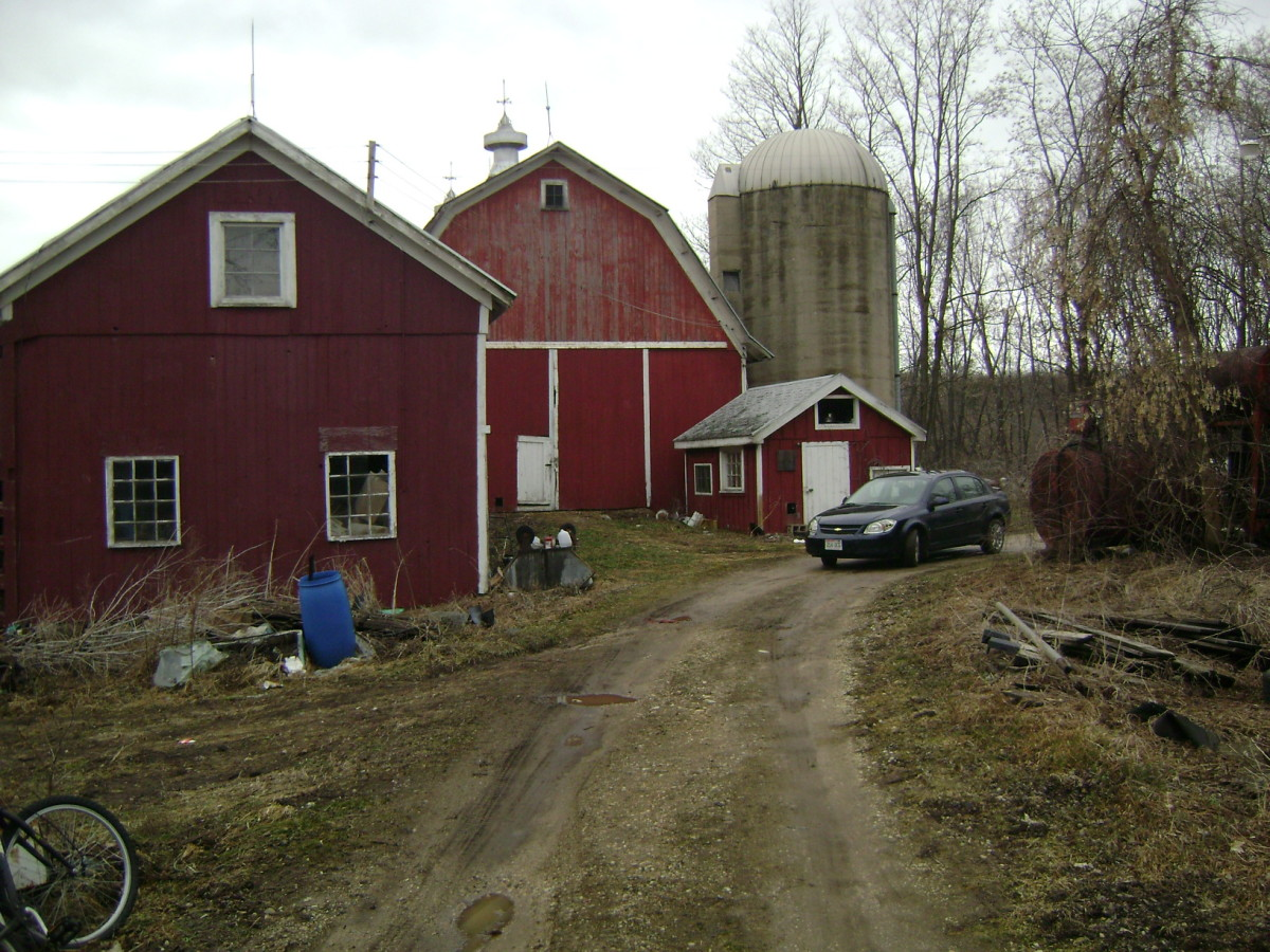 The old barn and buildings where I grew up.
