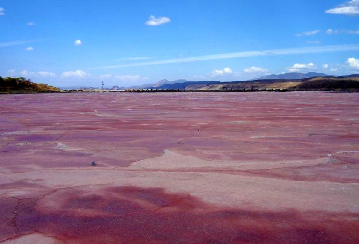 Pink Lakes Around the World