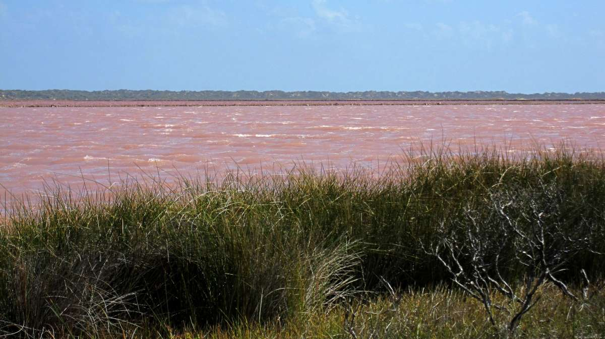 Hutt Lagoon is located in Western Australia and has pink water.