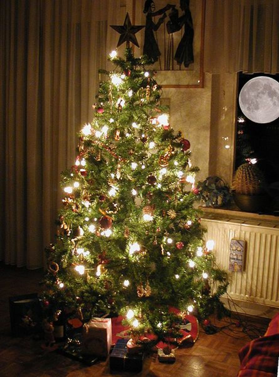 Is that a radiator back there? Don't place your tree near heat sources as they will dry out the tree.
