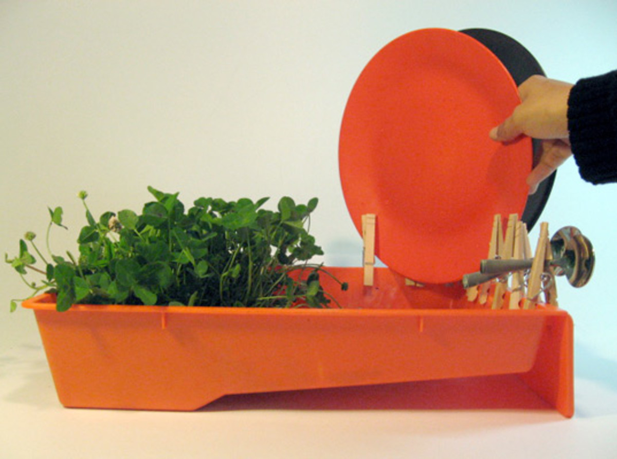A Spring Greening Contest entry from Nibha Jain and Srikanth Jalasutram is a dish tray that doubles as an herb water system