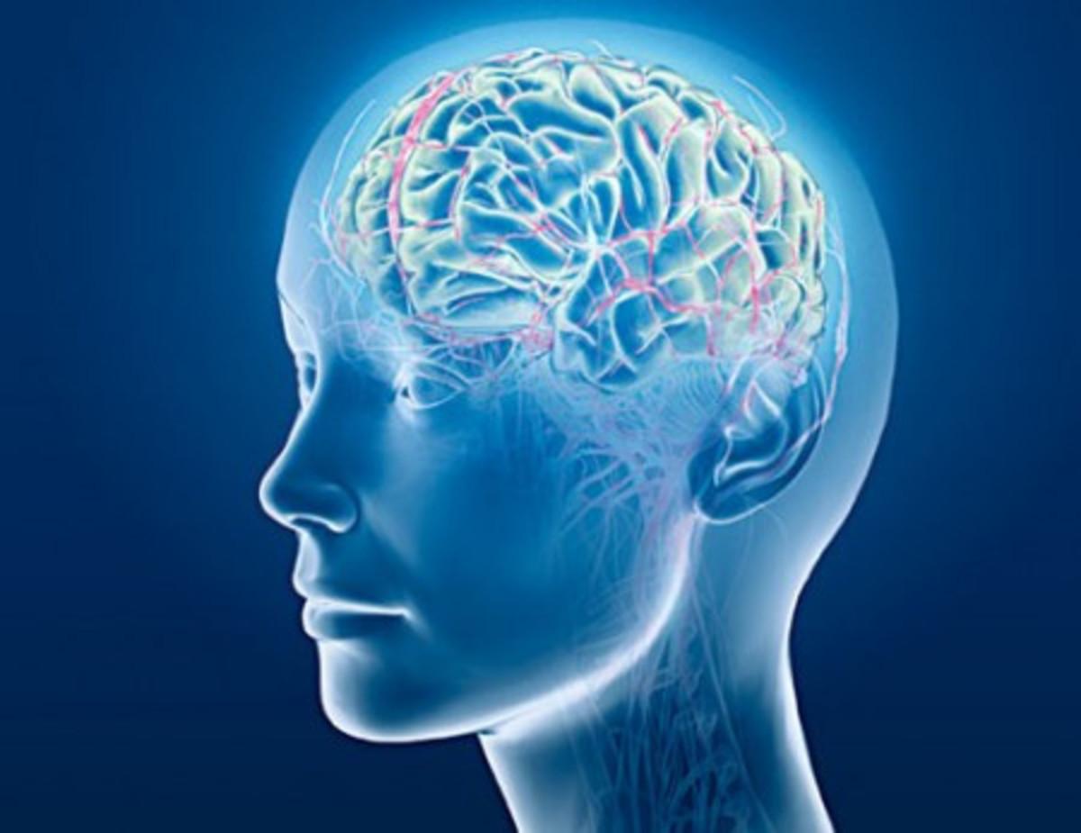 rewiring your brain