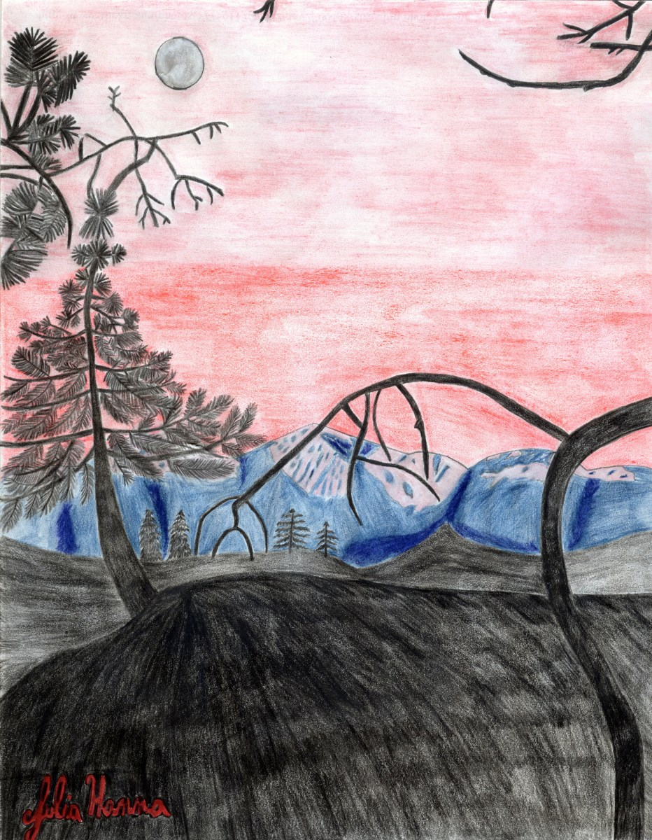 My forest sunset sketch drawing, which is based on photographs I took in the San Bernardino Mountains.