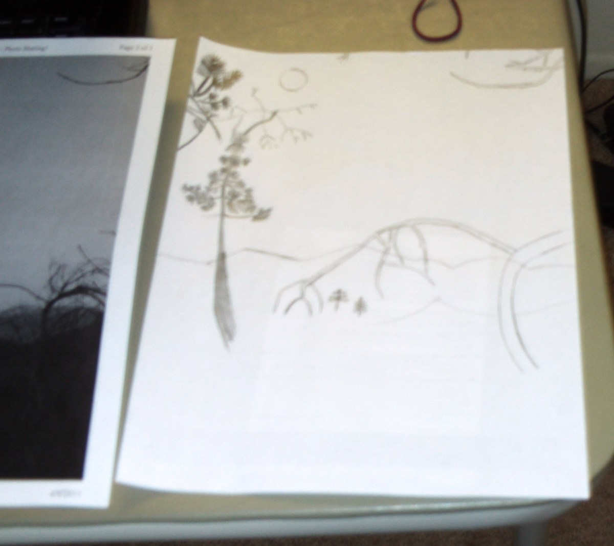 Here I used a print-out of a reference photograph as I sketched the forest scene.